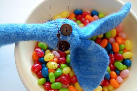 Bunny Head & Beans
