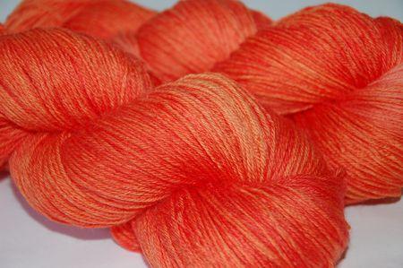 Deep Tangerine 006