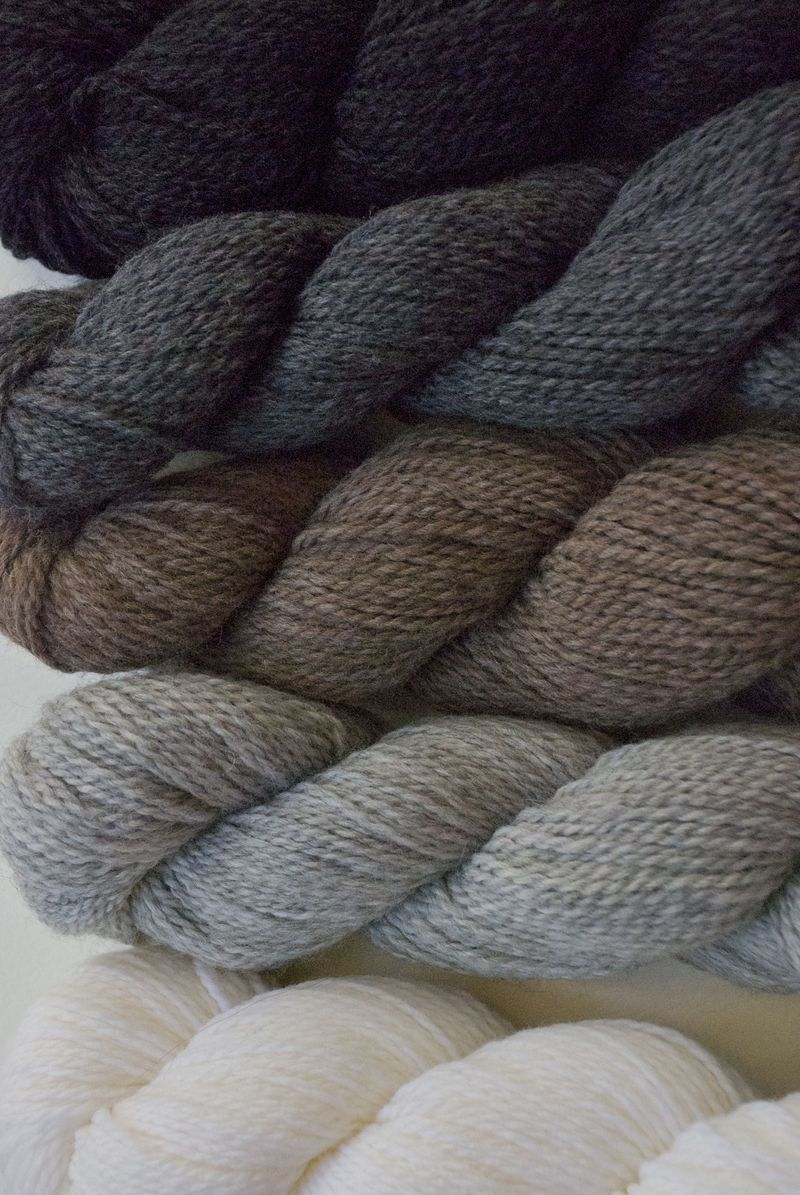 Colorwork Neutrals