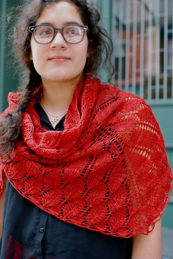 Verb Shawl 3