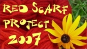 Red_scarf_project